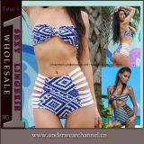 Fancy Hot Fashion Sexy Bikini Swimwear Lady Bikini (41310)