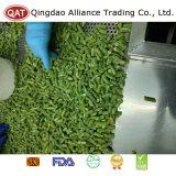 Frozen Cut Green Beans for Exporting