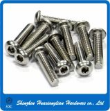 OEM Customised/Standard Stainless Steel Brass Aluminum Screw