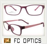 Hot Sale New Design Acetate Eyeglasses Frames