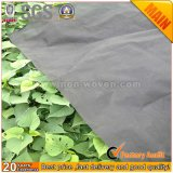 Eco-Friendly Biodegradable 100% PP Agricultural Fabric