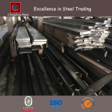 Ss400 Hot Rolled Mild Steel Flat Bar (CZ-F38)