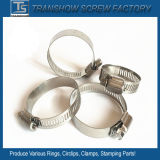 China Customized Adjustable Germany Style Stainless Steel 304 Hose Clamps