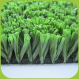 Beautiful Appearance Artificial Grass for Cricket Field