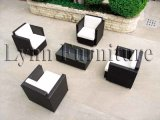 Outdoor Furniture/Outdoor Sofa (LN038)