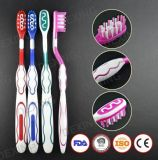 Bulk Branded Adult Oral Clean Dental Toothbrush with Tongue Scraper