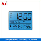 Customerized Stn Type Monochrome Small Size LCD Screen Display