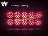 450W LED Plant Light Grow Light for Indoor Flower Fruit
