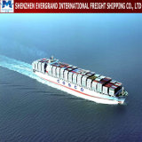 Sea Freight Door to Door From China to Norway