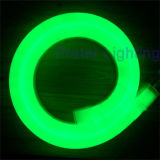 220V Green LED Neon Light