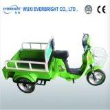 Electric Pedicab Tricycle with En12184, En15194
