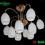 Decorative Glass Pendant Lamp/Chandelier Lighting (X-8106/5+5)