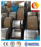 Stainless Steel Cold Rolled Bright Surface Sheet Grade 321 310S