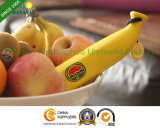 Creative Umbanana Banana Umbrella for Promotional Gifts (BOT-3619Z)