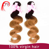 Wholesale Malaysian Hair Extension, 1b 27 Ombre Hair Body Wave