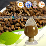 Natural 10: 1 20: 1 Cassia Seed Extract