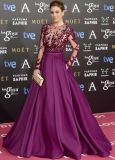 Long Sleeve Celebrity Dresses Wine Red Prom Gown Evening Dresses