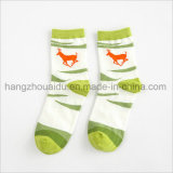 Popular Fashion Market for Ladies Cotton Socks