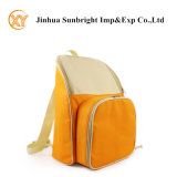 Fashion Outdoor Picnic Cooler Bag