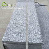 G623 Silver Grey Granite Step Treads with Half Bullnose Edge