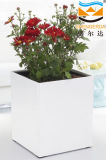 Decorative Plastic Flower Pots (HG-GL1)