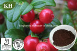 Lingonberry Extract Powder, Red Bilberry Extract Powder CAS No.: 84082-34-8