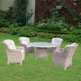 Outdoor Patio PE Rattan Table 7 Chair (kr-006)
