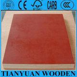 Waterproof Pine Plywood/Red Film Faced Plywood
