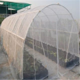 Agricultural Products Crop Insect Net
