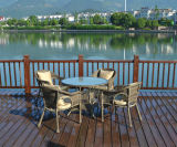 Garden Patio Wicker Rattan Outdoor Furniture (T2302)