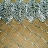 Electro Galvanized Chain Link Steel Fence