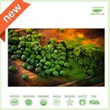 OEM ODM Green Algae Chlorella Anti Radiation Supplement Tablets