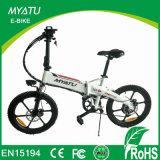 Folding E Bike with 250W Rear Motor