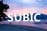 China Good Shipping Company Offer Professional Service From Qingdao to Subic