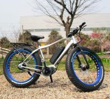 Best Rated MID Drive Electric Bike for Adults