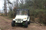 150cc/200cc/250cc/300cc Electric Automative UTV Quad
