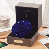 Constellation Preserved Flowers with Light for Christmas