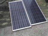 OEM/ODM 130W Poly Solar Panels Factory Direct (GSPV130P)