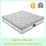 Plushbed Mattress Euro Box Pocket Spring King Mattress Spring