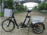 CE Approval Electric Tricycle with Lithium Battery
