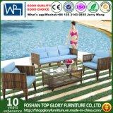 Modern Artificial Outdoor Garden Furniture Rattan Sofa (TG-017)