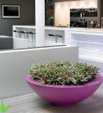 Fo-247 Bowl Shape Decorative Fiberglass Flower Pot