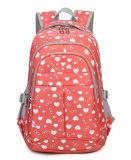 2017travel Backpack School Bag Laptop Bag Backpack Bag Yf-Pb0205