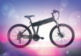 Power Assisted Bicycle with Lithium Battery (CB-26MT01)