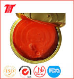Vego Healthy Organic 210g Canned Tomato Paste with Low Price