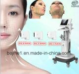 Beco Hifu Face Lift Hifu Beauty Machine (FU4.5-2S)