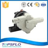 Stainless Steel Small Solar DC Pump / Solar Water Pump/Solar Pump Water/Solar Heater Pumps Solar Panel Pump/Mini Solar Pump System (TD5)