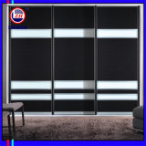 White and Black Easy Design Wardrobe (ZH025)