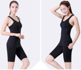 Solid Color Nylon Elastane Yoga Wear Yoga Suits Yoga Sets