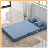 Portable Comfortable Daybed, Living Room Sleeping Sofa Bed 195*150cm